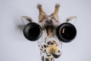 Giraffe camera lenses, Our approach